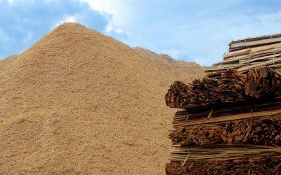 La biomasse : énergie de proximité